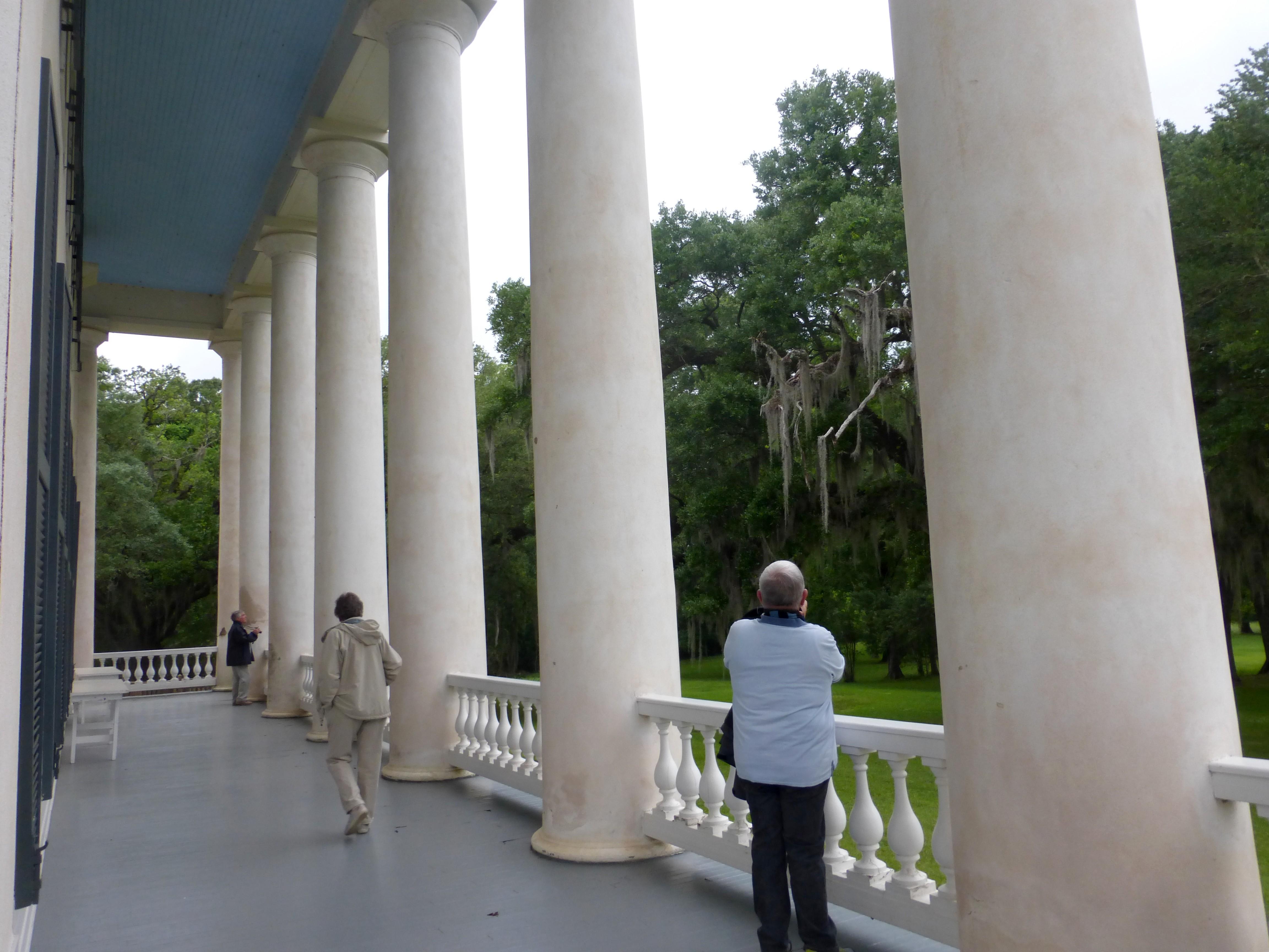 Plantation greenwood, les colonnes